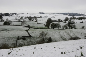 early snow in the dale